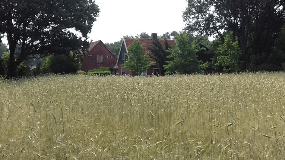 boerderij Brunninkhuis