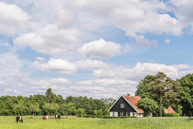 gezondheid-dichtbij-boerderij